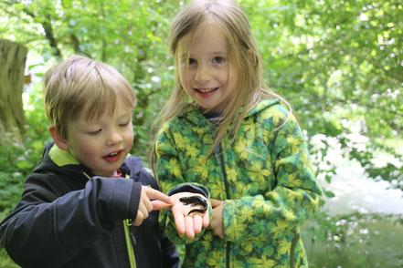 Kinder mit einem Kammmolch auf der Hand