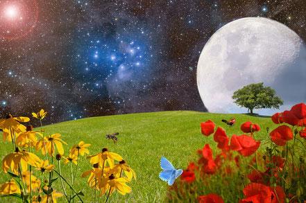 La création de Dieu - Les différentes étapes de la création de la Terre.