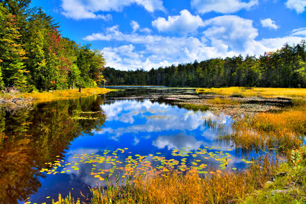 Fly Pond on Rondaxe Road - Old Forge, NY - ADK004