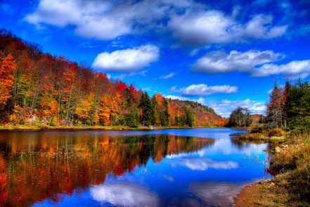 Autumn Reflections on Bald Mountain Pond - ADKA005