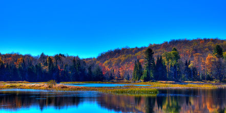 Autumn Reflections on the Moose River - Thendara - ADKA006