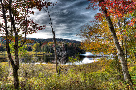 West Lake Through the Trees - Old Forge, NY - ADKA017