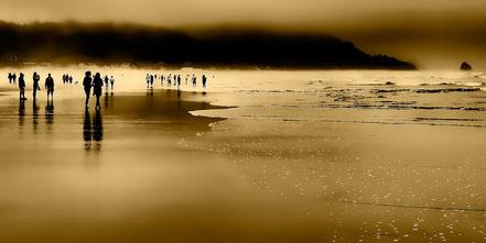 Morning Fog on Cannon Beach - Cannon Beach, OR - NWCN013