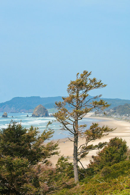 Cannon Beach from the Distance - NWCB010