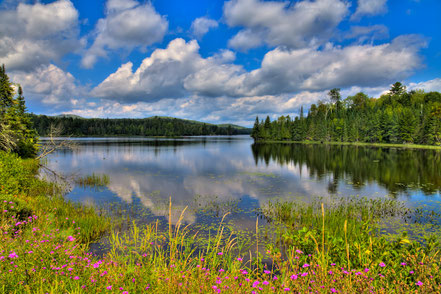 Lake Abanakee in Indian Lake, New York - ADK0010