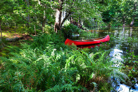 Red Canoe in the ADK, Old Forge, NY - ADKCK004
