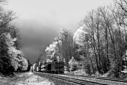 Railroad Landscape - BW009