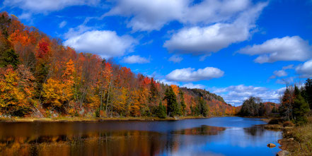 The Calm of Autumn at Bald Mountain Pond - Old Forge  - ADK033