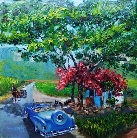 Vinales, cuba, classic car, vintage car, fruit, landscape, oil painting