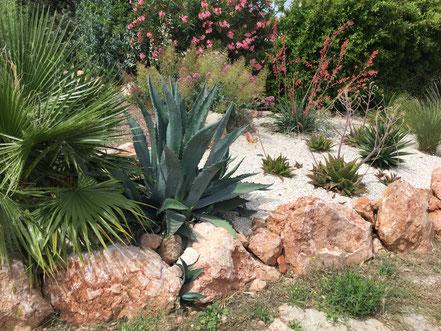 aménagement très beau jardin particulier à Bouzigues