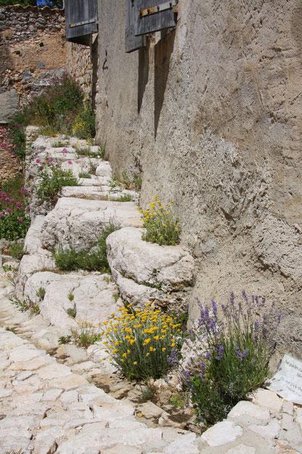 Bild: Garten im Schloss von Simiane-la-Rotonde