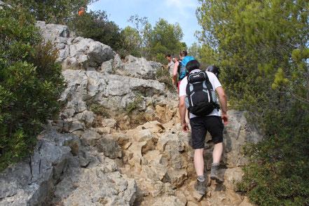 Bild: Wanderung zur Calanque d´en Vau