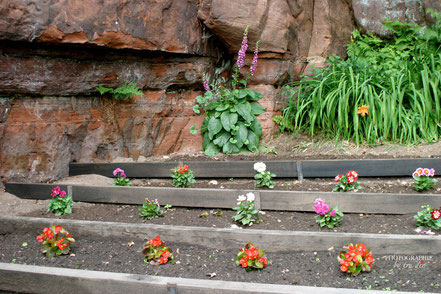 Bild: Felsenhäuser in Graufthal, Maison des rochers
