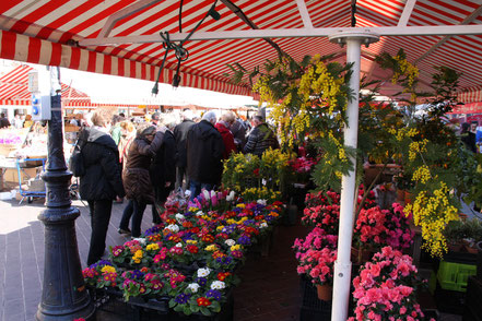 Bild: am Marché aux Fleurs in Nice (Nizza)