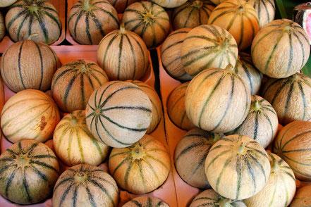 Bild: Melonen aus Cavaillon, Provence