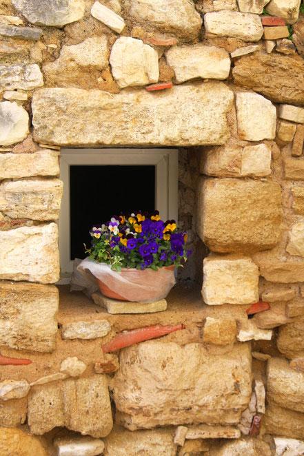 Bild: Fenster in Caseneuve