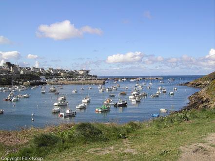 Bild: Im Hafen von Le Conquet