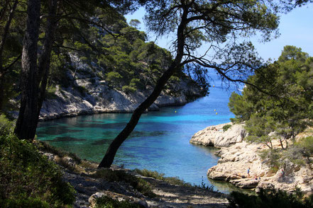 Bild: Calanque de Port Pin