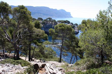 Bild: Wanderung zur Calanque de Port Pin
