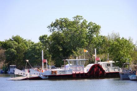 Bild: Fahrt mit der TIKI III bei Saintes-Maries-de-la-Mer, Camargue