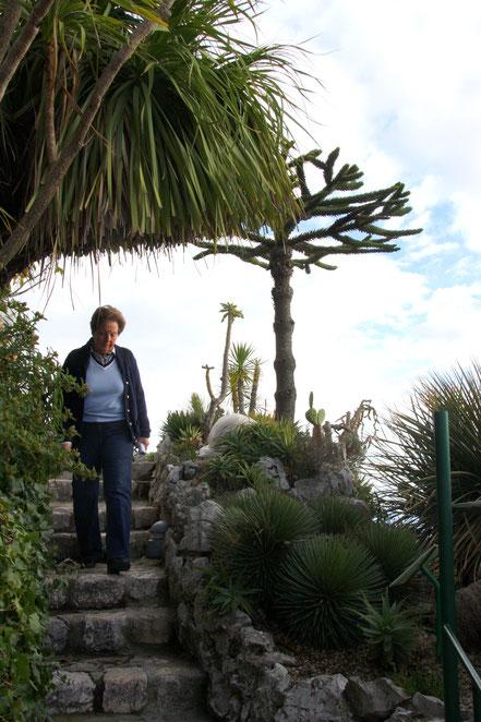 Bild: Èze, exotischer Garten