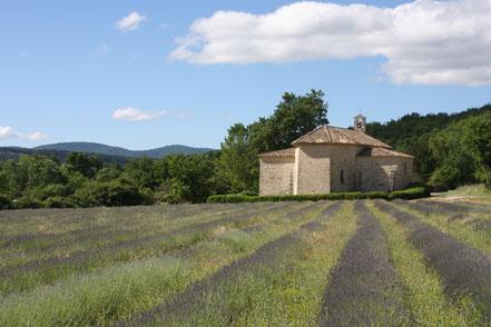 Bild: Lavendelroute auf der Fahrt nach St.-Martin-de-Castillon
