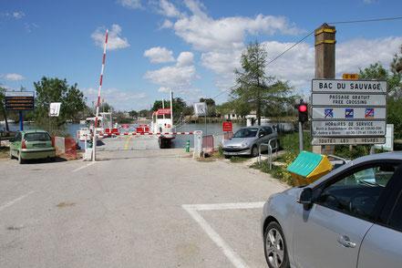 Bild: Autofähre über die Petit Rhône