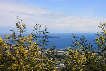 Bild: Blick aus dem Tannerongebirge auf das Meer