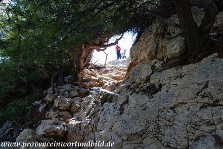 Bild: Wanderung bei Callelongue zur Calanque Marseilleveyre