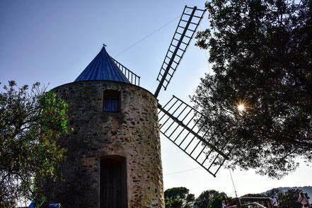 Bild: Le Moulin du Bonheur, Île de Porquerolles