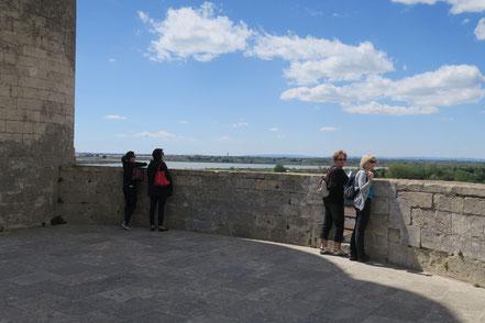 Bild: Aussichtsplatform des Tour de Constance in Aigues-Mortes
