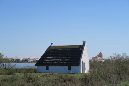 Bild: Typisches Haus der Camargue bei Saintes-Maries-de-la-Mer