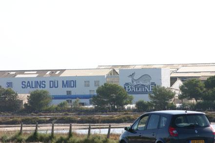 Schon kommen wieder die Salinen von Aigues-Mortes
