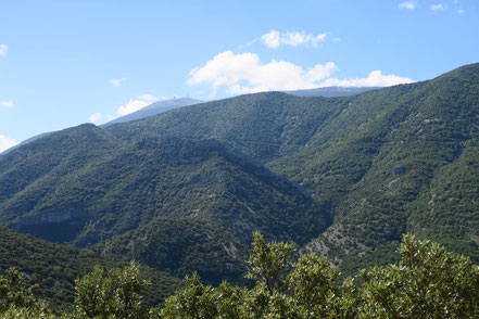 Bild: Das Tal des Toulourence