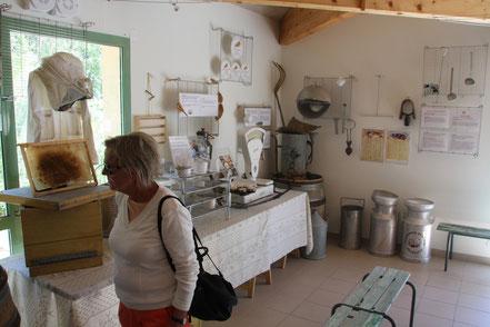 Bild: Ziegenkäserei in Banon