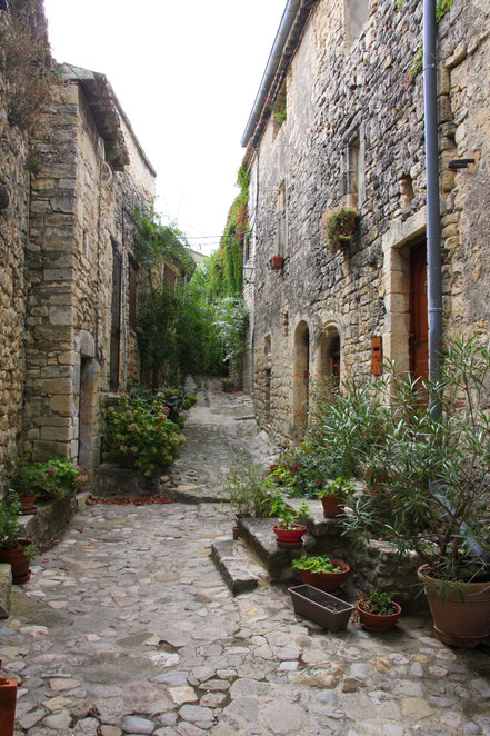Bild: Straße in Crestet