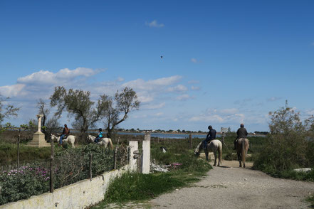 Bild: Saintes-Maries-de-la-Mer