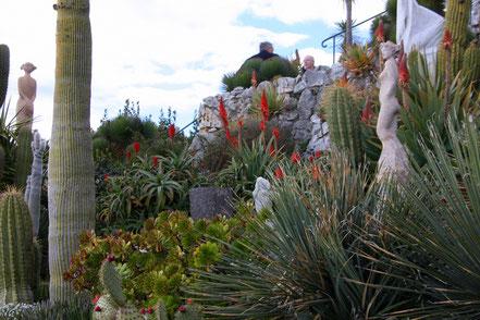 Bild: Exotischer Garten in Èze, (Jardin exotique