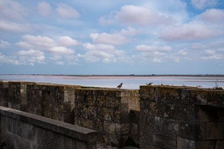 Bild: Aigues-Mortes