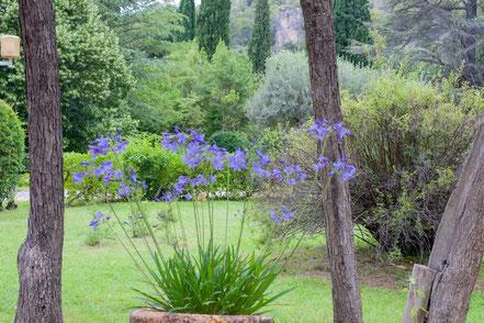 Bild: im Park von Villecroze im Departement Var