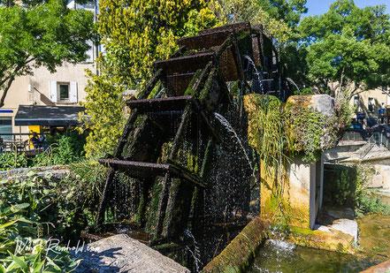 Bild: Wasserrad in L´Isle-sur-la-Sorgue