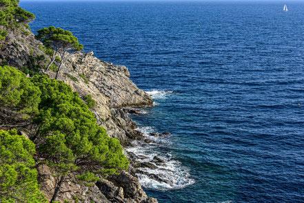 Bild: Île de Porquerolles