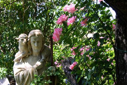 Bild: Jardin de l´Abbaye de Valsaintes, Simiane-la-Rotonde