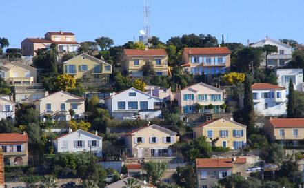 Blick in eine Siedlung mit blühenden Mimosen