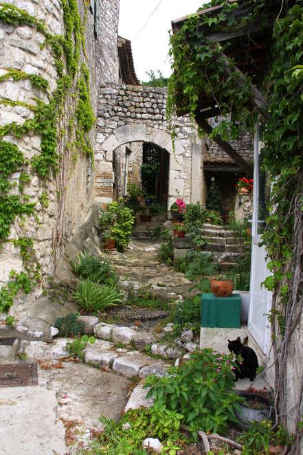 Bild: Hinterhof in der Provence