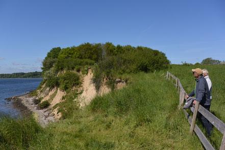 Rundgang Ochseninsel
