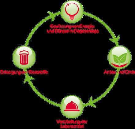 Nachhaltige Verwertung organische Reststoffe