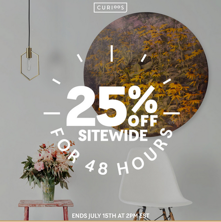 You have the opportunity with this promo to get 25% off on all my wall art shop in curioos