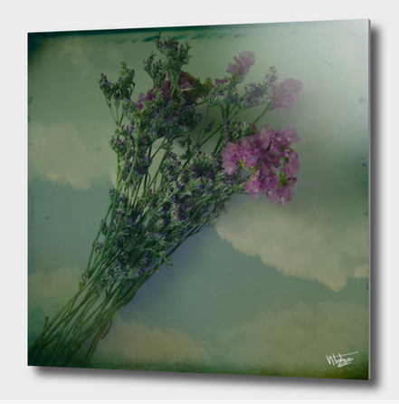 Lilacs vintage photograph available in my curioos shop as aluminum print