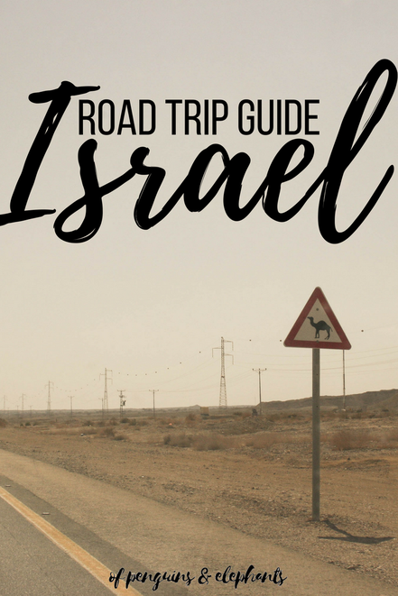 Israel ofpenguinsandelephants of penguins & elephants Road Trip Guide Exploring Israel Pinterest